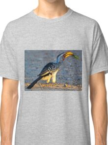 Yellow-Billed Hornbill with Lunch (Tockus leucomelas) Classic T-Shirt