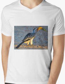 Yellow-Billed Hornbill with Lunch (Tockus leucomelas) Mens V-Neck T-Shirt