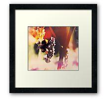 Bumble bea Framed Print