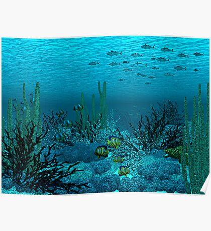 Tuna Reef Poster
