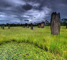 Litchfield Greens by Robert Mullner