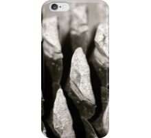 Pine cone in detail iPhone Case/Skin