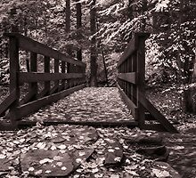 Kitchen Creek Footbridge by Aaron Campbell