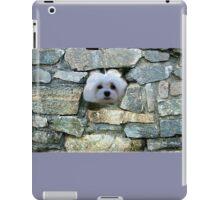 Snowdrop the Maltese - Peek-a-Boo - I Can See You ! iPad Case/Skin