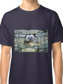 Snowdrop the Maltese - Peek-a-Boo - I Can See You ! Classic T-Shirt