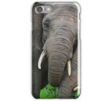 """Just Married"" (Loxodonta africana) iPhone Case/Skin"