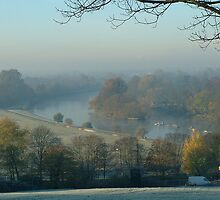 Winter at Turner's view, Richmond, Surrey by Carl Conway
