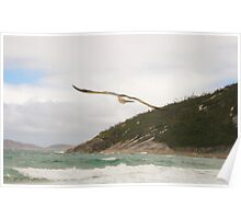 Wilsons Promontory - Free Poster