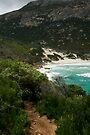 Wilsons Promontory - Little Oberon Bay by Richard Heath