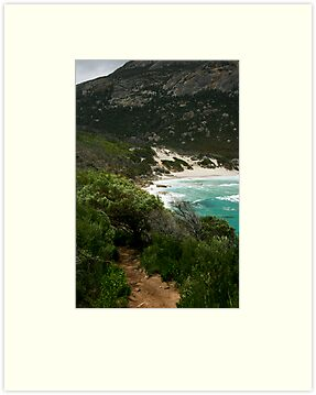 Wilsons Promontory - Little Oberon Bay by Richard Heath