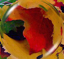 globalisation by barbara  heide