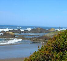 Oregon Coast Scenery by carpenter777