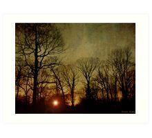 Last Rays Art Print
