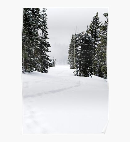 Snowshoe Trail Poster