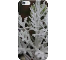 Silvery plant on a winters day iPhone Case/Skin
