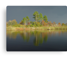 The Five Pines before the Storm Canvas Print