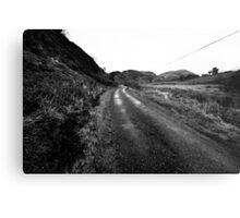The Long Road Metal Print