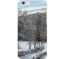 Walking In A Winter Wonderland iPhone Case/Skin