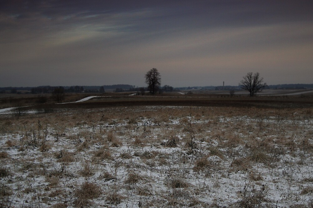 Half hour before storm by Antanas