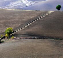 Valley south of Pienza, Tuscany,Italy by al holliday
