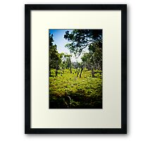 Tranquil Moments Framed Print