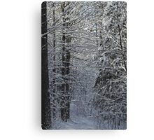Snowy Hike Trail  Canvas Print