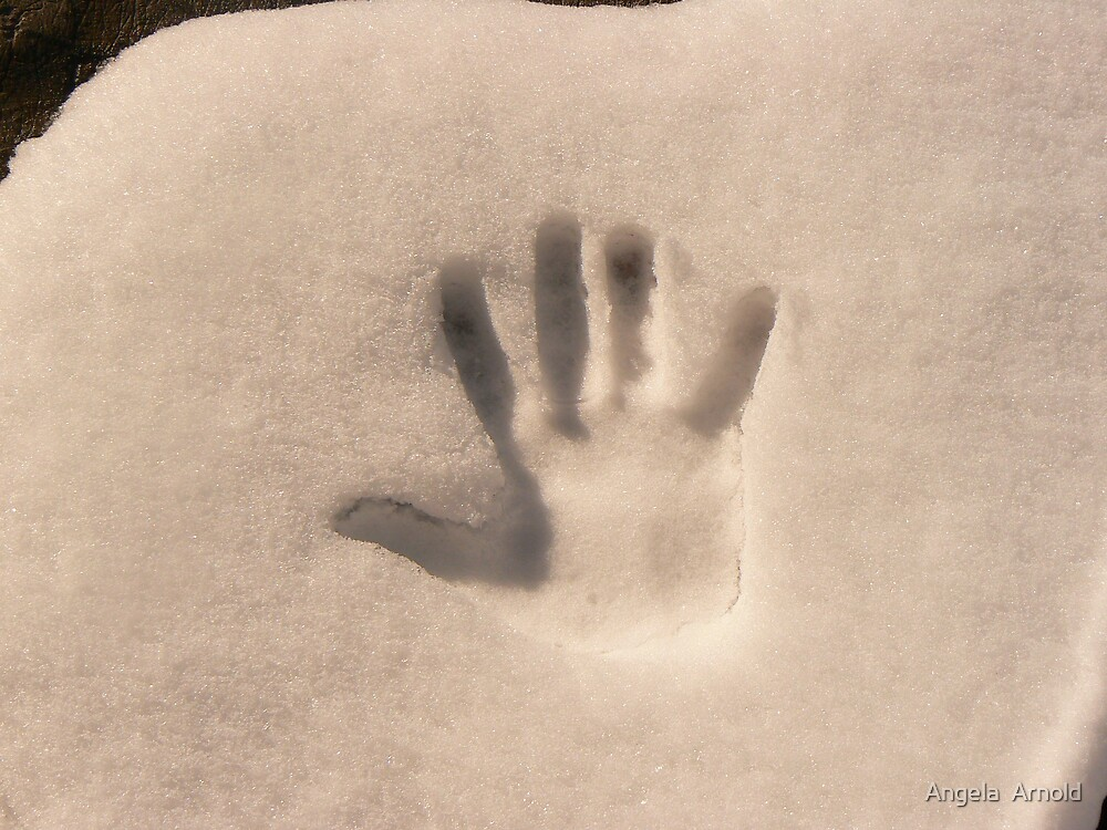 snowy high five by Angela  Arnold