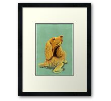 Did someone say 'biscuit'? Framed Print