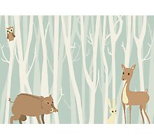 Cute Forest Photographic Print
