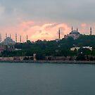 Istanbul Skyline at dusk by Tom Gomez