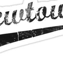 Newtown Sticker