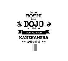 Master Roshi Dojo v2 Photographic Print