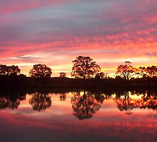 Sunset on the Murray River near Bow Hill by Juliashmoolia