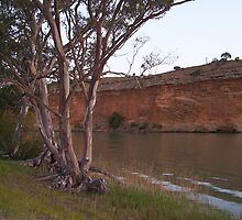 Dusk, overlooking cliffs on the Murray River near Bow Hill by Juliashmoolia