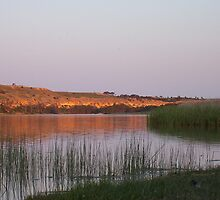 Dusk, overlooking a lagoon on the Murray River near Bow Hill by Juliashmoolia