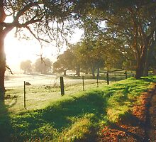 Sunrise overlooking pasture on the Adelaide to Mannum Road, Tungkillo, South Australia by Juliashmoolia