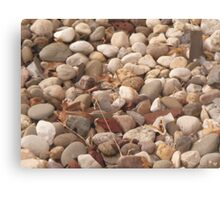 Rememberance Rocks Canvas Print