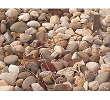 Rememberance Rocks Photographic Print