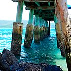 Support - Daydream Island, Whitsunday Islands, Queensland Australia by Philip Johnson