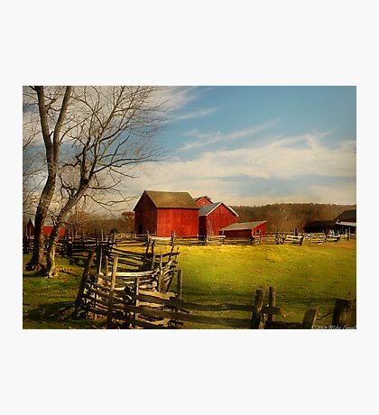 Bought The Farm Photographic Print