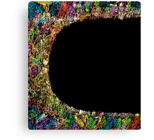 Colorful frame  Canvas Print