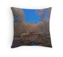 River of Peace Throw Pillow