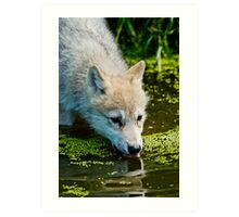 Mighty Big Thirst For A Little Fella Art Print