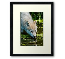Mighty Big Thirst For A Little Fella Framed Print