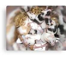 Canned Mice Canvas Print