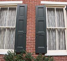 shutters by Anne Scantlebury