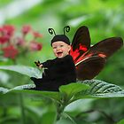 Baby Finds Butterfly by Deanna Roy