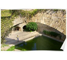 Palma Cathedral Courtyard Poster