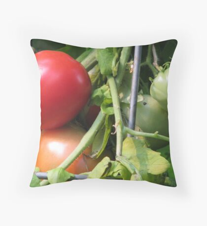 Tomatoes on the Vine Throw Pillow