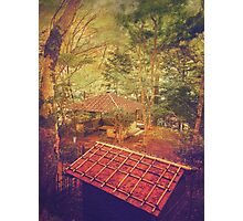 Wooden Gazebo and Small Shed in Forest Photographic Print